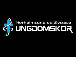 nøuk logo storskjerm